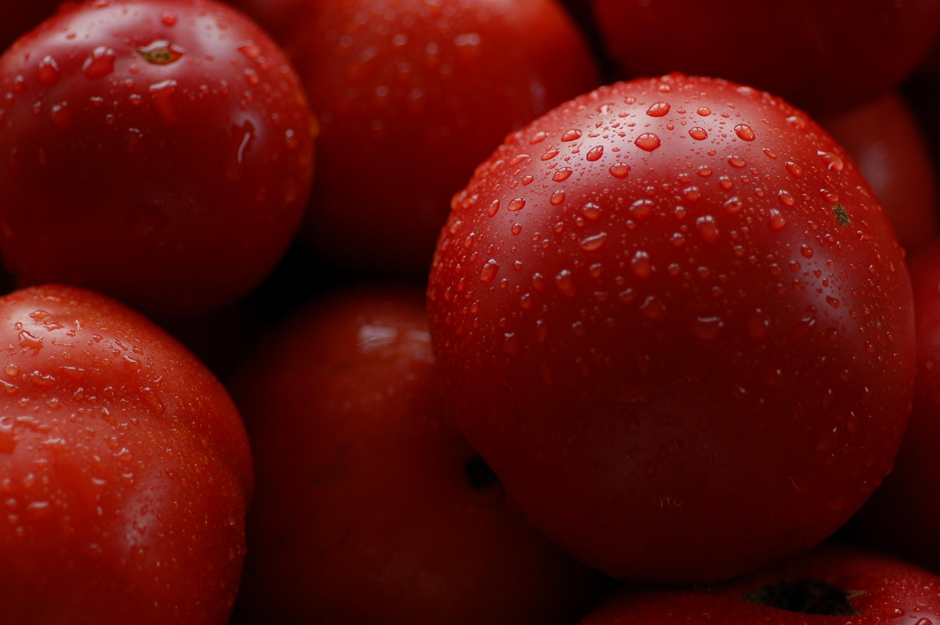 Tomate Savignac