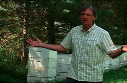Le Clos des Brumes ruches